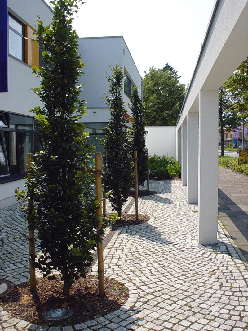 Augenarztpraxis in Rotenburg: Lohmann Architekten